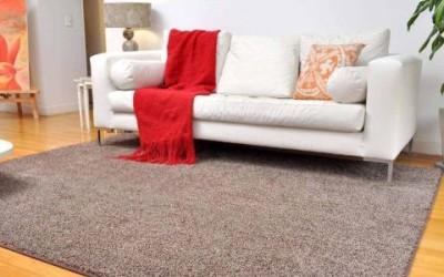 郑州林森保洁带您看地毯清洗新技术